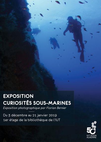 curiosités sous-marines Florian Bernier Exposition IUT DIJON