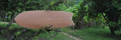 mini simmons lace wood elleciel surfboards
