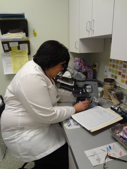 Dr Kovalic examining a sample under microscope
