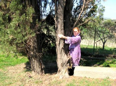 abbraccio a un albero....energia risanatrice
