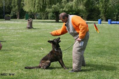 Semtex beim Training mit Rainer