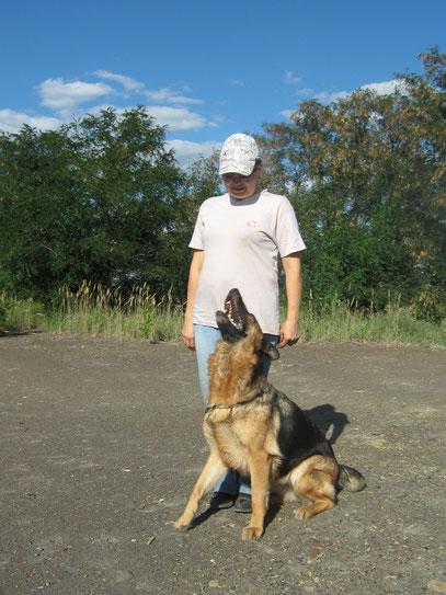 Подготовка к сдаче ВН (собака - компаньон) с Темпрой фон Нордэн - Штэрн.