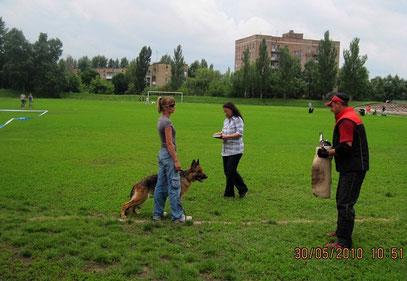 Ярость фон Нордэн(Бару с Каменной Земли-Нэксия фон Нордэн)-перед проверкой поведения на выставке в Донецке 30.05.10.