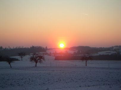 Mühlviertel - Winter 2002/2003