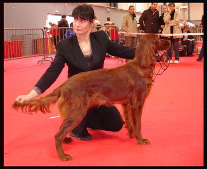 sa 1ère expo : Toulouse 2007 ( 8 mois )