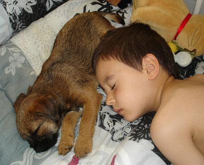 Une sieste avec Lubin