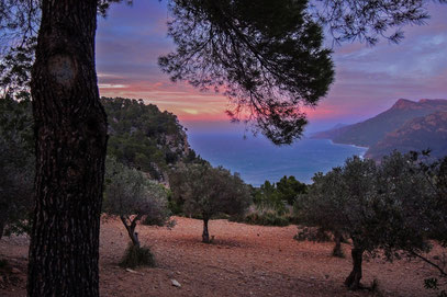 Tramontana Mallorca