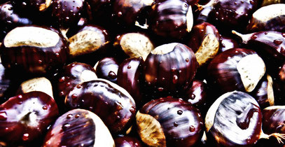 chestnuts-439089_1280_cc_pixabay