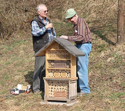 Herr Zahnen und Herr Schnepper beim Aufstellen des Wildbienenhauses
