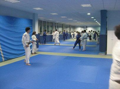Entrenamiento del Club Calasanz de Judo en Usurbil