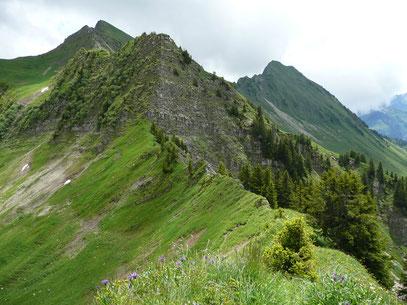 Glatthorn:Links hinten / Türtschhorn: Rechts hinten. / Gesehen vom Kleinen Damülser Horn