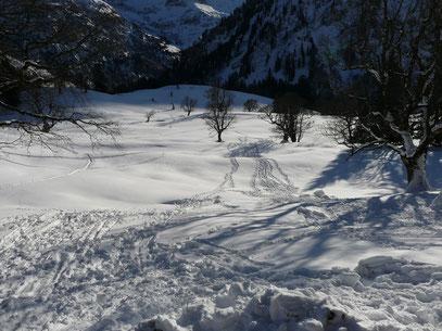 Gelände unterhalb der Schwarzenberghütte