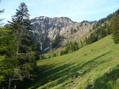 Zwischen Sattel Alpe und Unterfluhalpe mit Blick zum Alpkopf