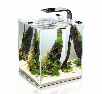 Aquael Aquarium Shrimp Set SMART LED, Komplettset