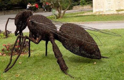 bee, iron wire, honeybee sculpture
