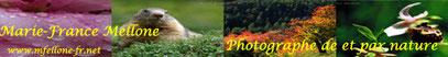 Un régal pour les yeux ,photos de paysages,fleurs et bien d'autres