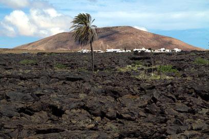Blick aus dem Umwelträume-Saal in die Vulkanlandschaft