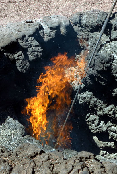 Die unterirdische Hitze des Timanfaya-Vulkans (über 400 Grad) reicht noch heute aus, um Reisig zu entzünden.