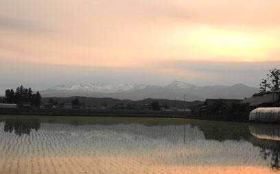 焼石連峰、木々、夕焼けなどが水田に映える景色は何とも言えません・・・
