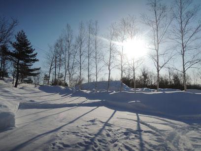 先週2/24(月)撮影。まだまだ雪はありましたね。