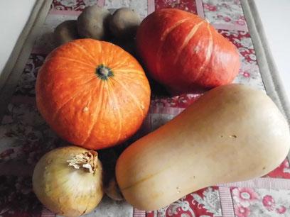 Hokkaido, Butternuskürbis, Kartoffeln, Gemüsezwiebel
