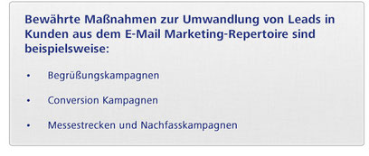 Instrumente im E-Mail Marketing zum Leadmanagement