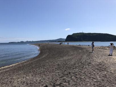 知林ヶ島のちりりんロード