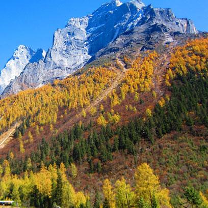 Mount Siguniang, Rilong