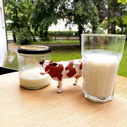 Sauer gewordene Milch - Das kann man mit ihr noch anfangen