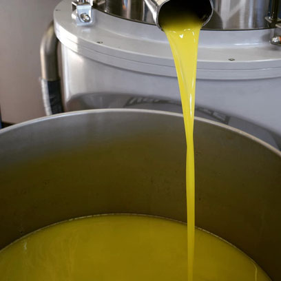 Gutes, gesundes Olivenöl - Auf was es ankommt