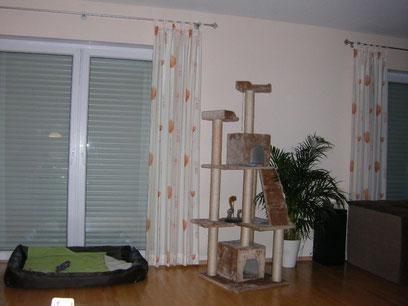 Mein Schlafplatz im Wohnzimmer/Esszimmer