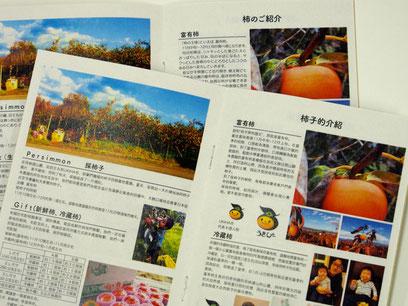 ぶどう・柿の農園のパンフレット。香港や台湾のバイヤー向けに作成しました。