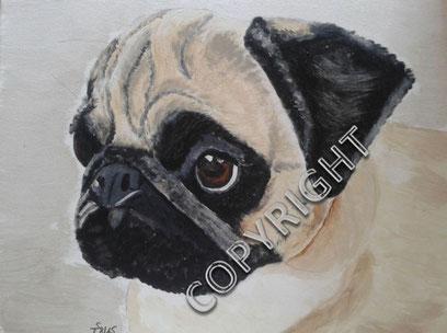 Hundeporträt, Acryl auf Leinwand, 40x50 cm, Fotovorlage: © Helga Guder, CLF Mobile Hundeschule. Kopfporträt eines Mopses. Hund hat helles Fell, schwarze Ohren und Schnauze. Auch die Partie um die Augen ist schwarz. Die  Augen sind braun, die Nase schwarz