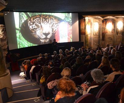 Conference and Screening of film in Mozart cinema Salzburg Austria 7.3.2019
