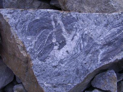 Zweiglimmer-Granodiorit / Anatexit