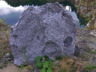 Biotit-Granodiorit mit Einschlüssen