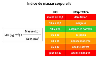 Comment calculer son IMC et lecture direct du resultat