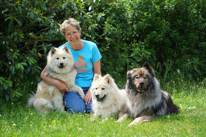 Eurasier vom Bärenstern Basilea vom Schmetterlingsgarten Teddy Aurea-Lucy vom Bärenstern