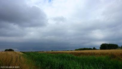 1ère approche, Baie de Somme, Picardie, photo non libre de droits