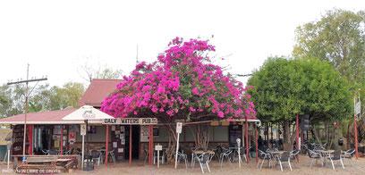 Cadre champêtre, Daly Waters pub, Australie, photo non libre de droits