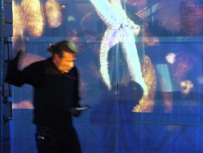 matthias dachwald, live performance lesung blaue nacht