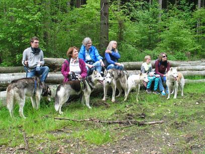 Von links: Amarok, Borea, Yukon, ich und Chenook