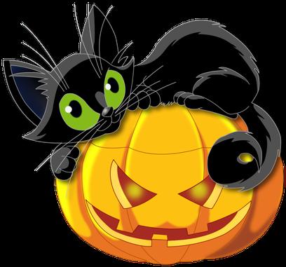 chat png halloween citrouille detoure pour illustration devoir ecole