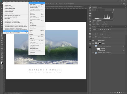 Photoshop, Softproof, ICC-Profil auswählen, Dr. Ralph Oehlmann, Oehlmann-Photography