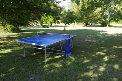 The ping-pong table in the middle of the park