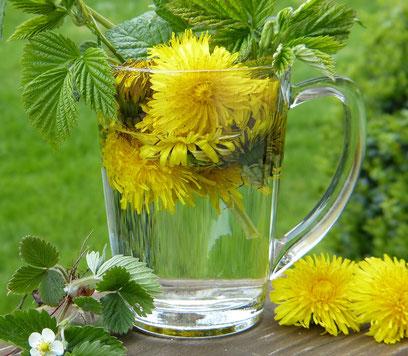 Blätter und Blüten für selbstgemachte Wildkräuterlimo