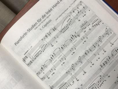 Pianofortestudien für die linke Hand allein op.113 左手のためのピアノ練習曲 作品113