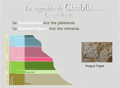 chablis geologie