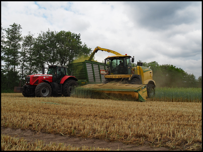 Krone Big X 780 mit X-Disc