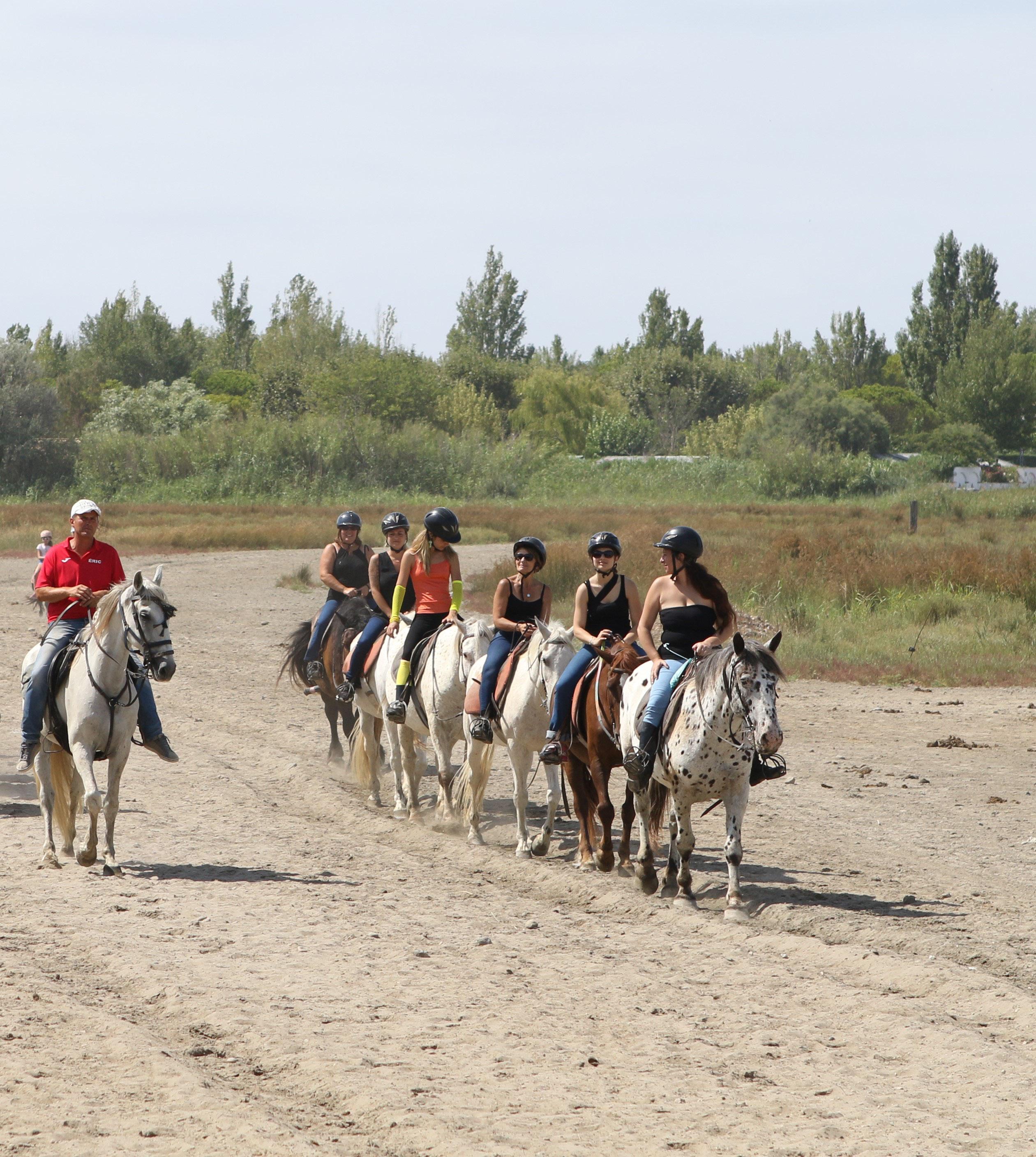 66d48a55084 AbrivadoRanch   promenades et balades à cheval pour tous autour du Grau du  Roi - Site de abrivadoranch ! faire du cheval en camargue ! rando cheval